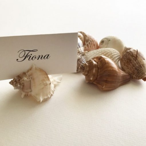 Place card shells