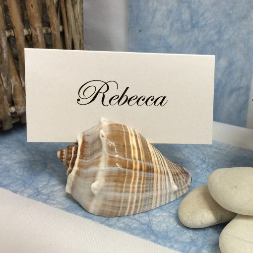 Shell Place Card Holder